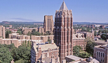 M&A Commence Preservation Project At Yale
